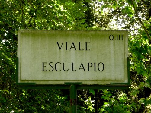 Tree-lined avenue sign, Rome